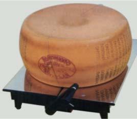 Attrezzature, accessori, prodotti ed articoli per formaggi, caseifici e minicaseifici.