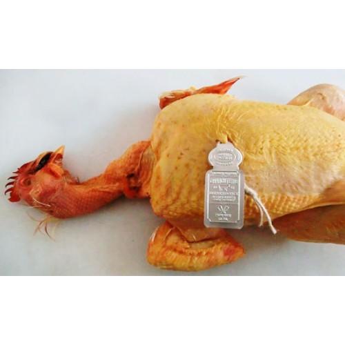 Sigilloni per pollame mm 86x30, personalizzati, stampati in rilievo senza inchiostri di stampa. Pertanto idonei ad andare anche a diretto contatto con l'alimento.