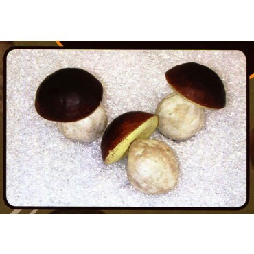 Funghi porcini finti artificiali mm 65x80, 3 pezzi (prezzo per 1 confezione da 3 funghi porcini).