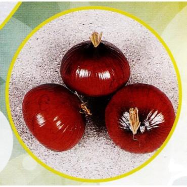 3 cipolle marroni finte mm 75x60 (prezzi per 1 confezione da 3 cipolle marroni)