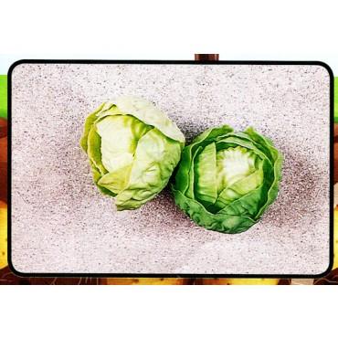 2 insalate finte mm 100 (prezzi per 1 confezione da 2 insalate)