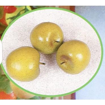 3 mele medie verdi finte mm 75x65 (prezzi per 1 confezione da 3 mele medie verdi)