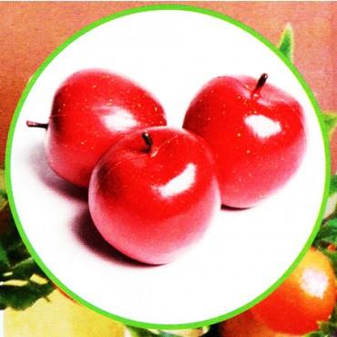 3 mele rosse finte mm 80 (prezzi per 1 confezione da 3 mele rosse)