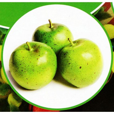 3 mele verdi finte mm 80 (prezzi per 1 confezione da 3 mele verdi)