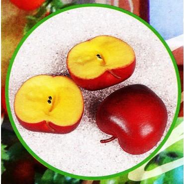3 mezze mele rosse finte mm 65x40 (prezzi per 1 confezione da 3 mezze mele rosse)