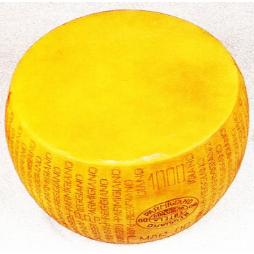 Forma di Parmigiano Reggiano marchiata cm 44x21