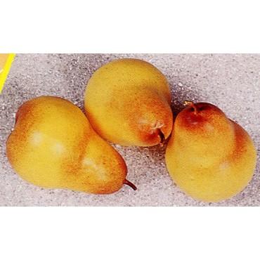 3 pere medie gialle finte mm 65x95 (prezzi per 1 confezione da 3 pere medie gialle)