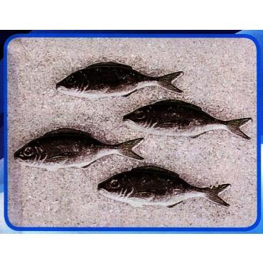 4 sardine finte mm 120x40 (prezzi per 1 confezione da 4 sardine)